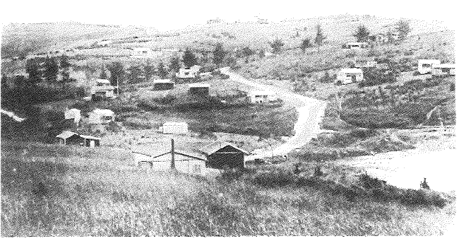 Murrays Bay 1920