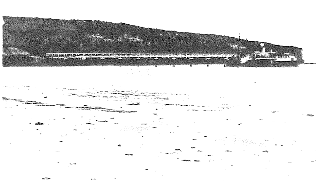 Murrays Bay Wharf 1916
